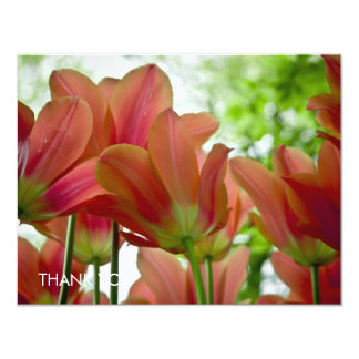 Macro rouge DSC0876 de tulipes Carton D'invitation 10,79 Cm X 13,97 Cm