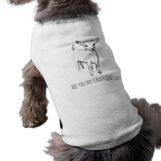 Madame folle Dog de chèvre/chemise d'animal T-shirt Pour Chien