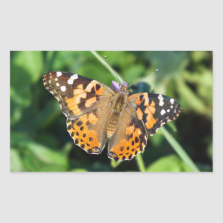 Madame peinte Butterfly Rectangle Sticker