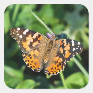 Madame peinte Butterfly Sticker