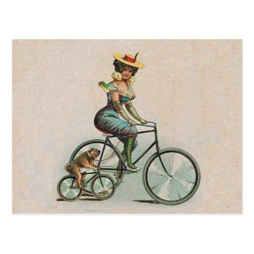 Madame victorienne vintage Dog Bicycle Carte Postale