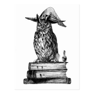 Magie de Halloween de hibou de sorcellerie Carte Postale