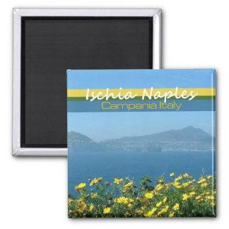 Magnet de photo de voyage de l'Italie de Campanie  Magnet Carré