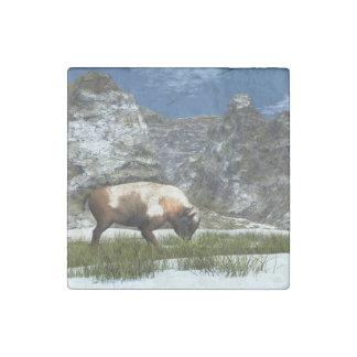 Magnet En Pierre Bison dans la montagne