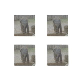 Magnet En Pierre Elephant_20171101_by_JAMFoto