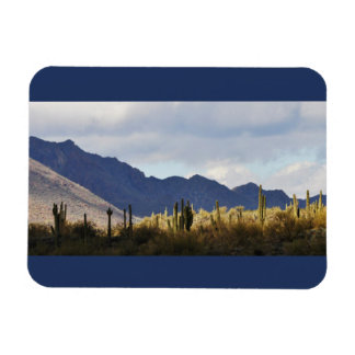 Magnet Flexible Aimant agréable de photo de Saguaros de lac