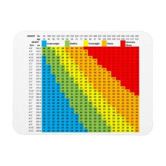 Magnet Flexible Aimant de diagramme de BMI