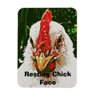 Magnet Flexible Aimant de poulet