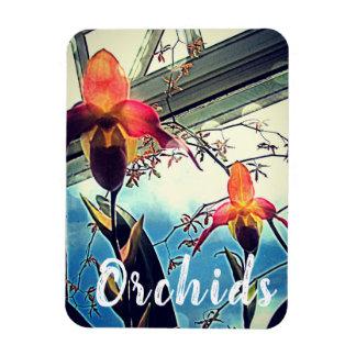 Magnet Flexible Aimant ensoleillé de photo d'orchidées