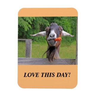 Magnet Flexible Aimant heureux de chèvre