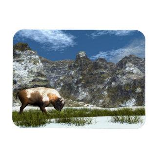 Magnet Flexible Bison dans la montagne