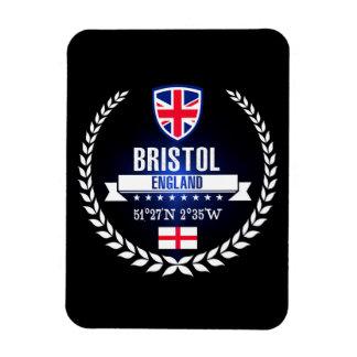 Magnet Flexible Bristol