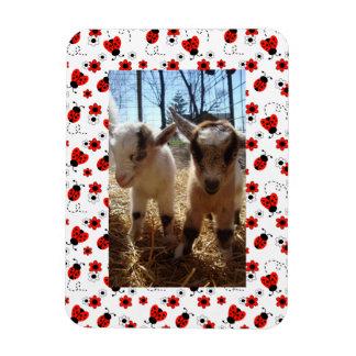 Magnet Flexible Cadre floral rouge de photo d'anniversaire de