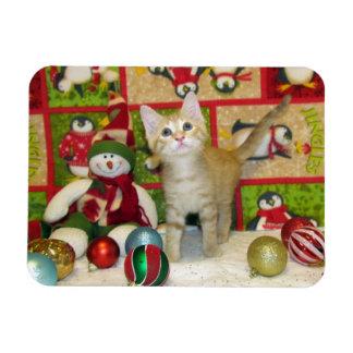 Magnet Flexible Chat, chaton, Noël, délivrance, photo