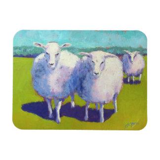Magnet Flexible Deux moutons dans le domaine