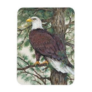 Magnet Flexible Eagle chauve sur la branche
