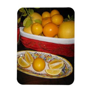 Magnet Flexible Fruits frais