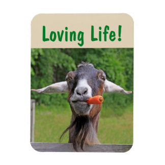 Magnet Flexible Inspiration de chèvre