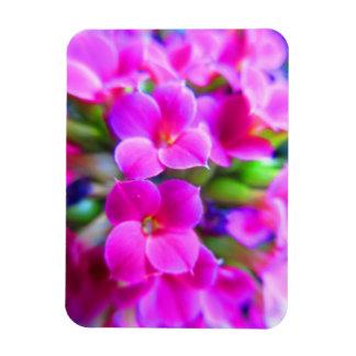 Magnet Flexible Kalanchoe heureux lumineux fleurit le pourpre