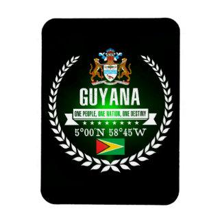 Magnet Flexible La Guyane
