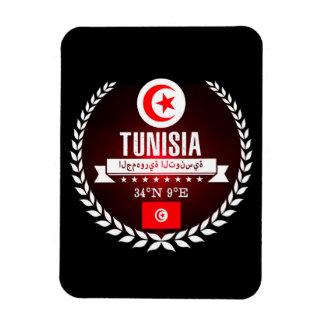 Magnet Flexible La Tunisie