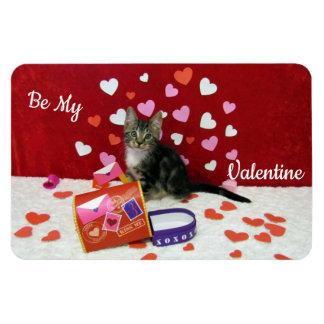 Magnet Flexible L'aimant de Valentine du bandit (chaton tigré)