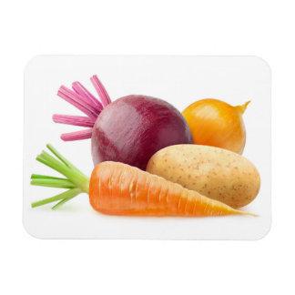 Magnet Flexible Légumes à racine