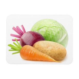 Magnet Flexible Légumes frais