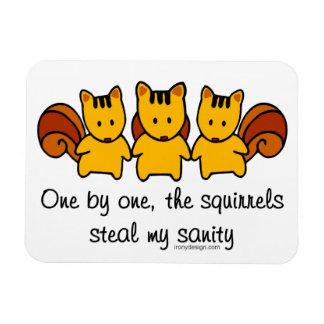 Magnet Flexible Les écureuils volent ma santé d'esprit
