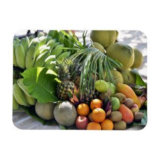 Magnet Flexible Noix de coco, oranges, chaux, bananes, papayes
