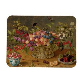 Magnet Flexible Peinture d'Isaak Soreau des fruits
