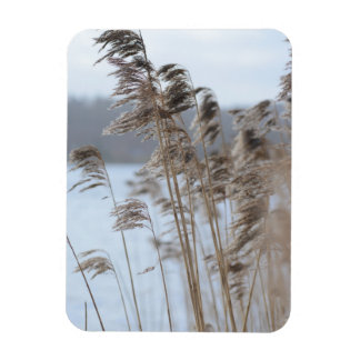 Magnet Flexible Photo pittoresque paisible d'herbe de lac winter