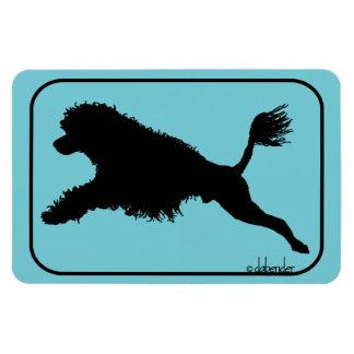 Magnet Flexible Plongée portugaise de chien d'eau