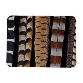 Magnet Flexible Plumes de queue de faisan