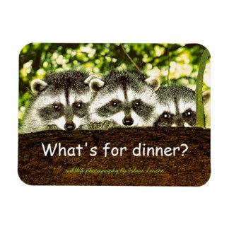 Magnet Flexible Qu'est pour le dîner ? Aimant de réfrigérateur de