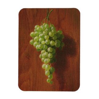 Magnet Flexible Raisins verts