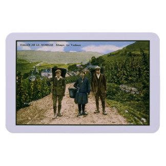 Magnet Flexible Récolte 1900 de vin de la Moselle Schengen