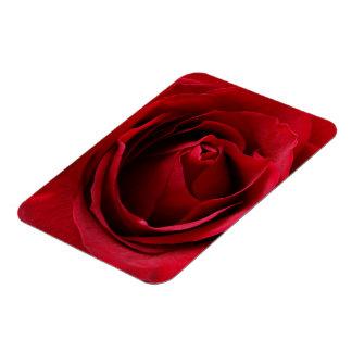 Magnet Flexible rouge-foncé s'est levé