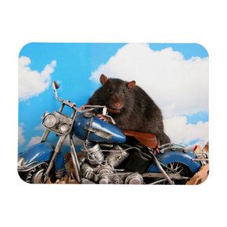 Magnet Flexible Tough Rattie On Motorbike