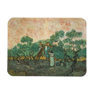 Magnet Flexible Vincent van Gogh | les récolteuses olives,