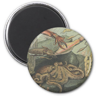 magnet pieuvre et poulpes steampunk