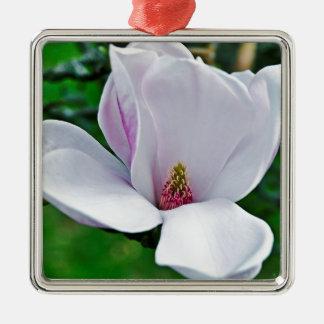 Magnolia élégant ornement carré argenté