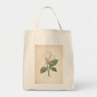 Magnolia vintage par Redoute - sacs d'épicerie