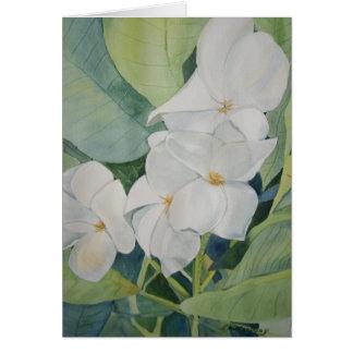 Magnolias dans la carte de voeux du Texas