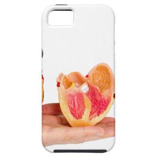 Main avec le modèle humain de coeur sur étuis iPhone 5