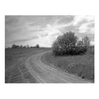 Maine_Black+White_150 Carte Postale