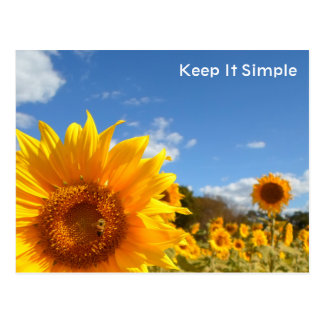 Maintenez-le simple avec des tournesols carte postale