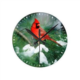 Mâle cardinal du nord sur l'arbre, IL Horloge Ronde