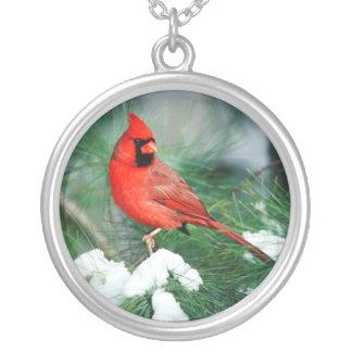 Mâle cardinal du nord sur l'arbre, IL Pendentif Rond