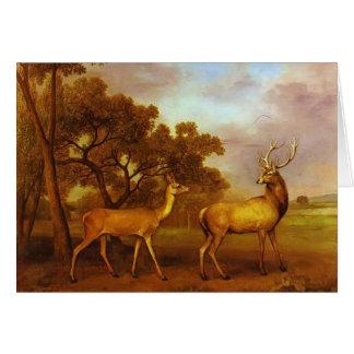 Mâle de cerfs communs rouges de George Stubbs- et Carte De Vœux